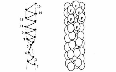 PTFE螺旋结构